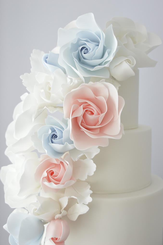suzanne esper cakes-6.jpg