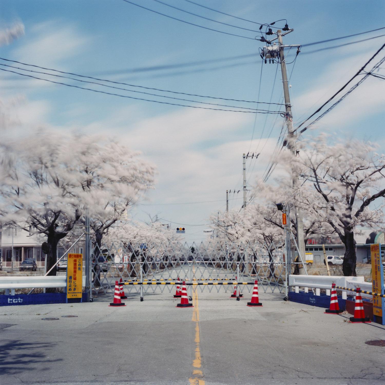 Apr. 12 , 2014 Tomioka Yonomori Fukusima Japan