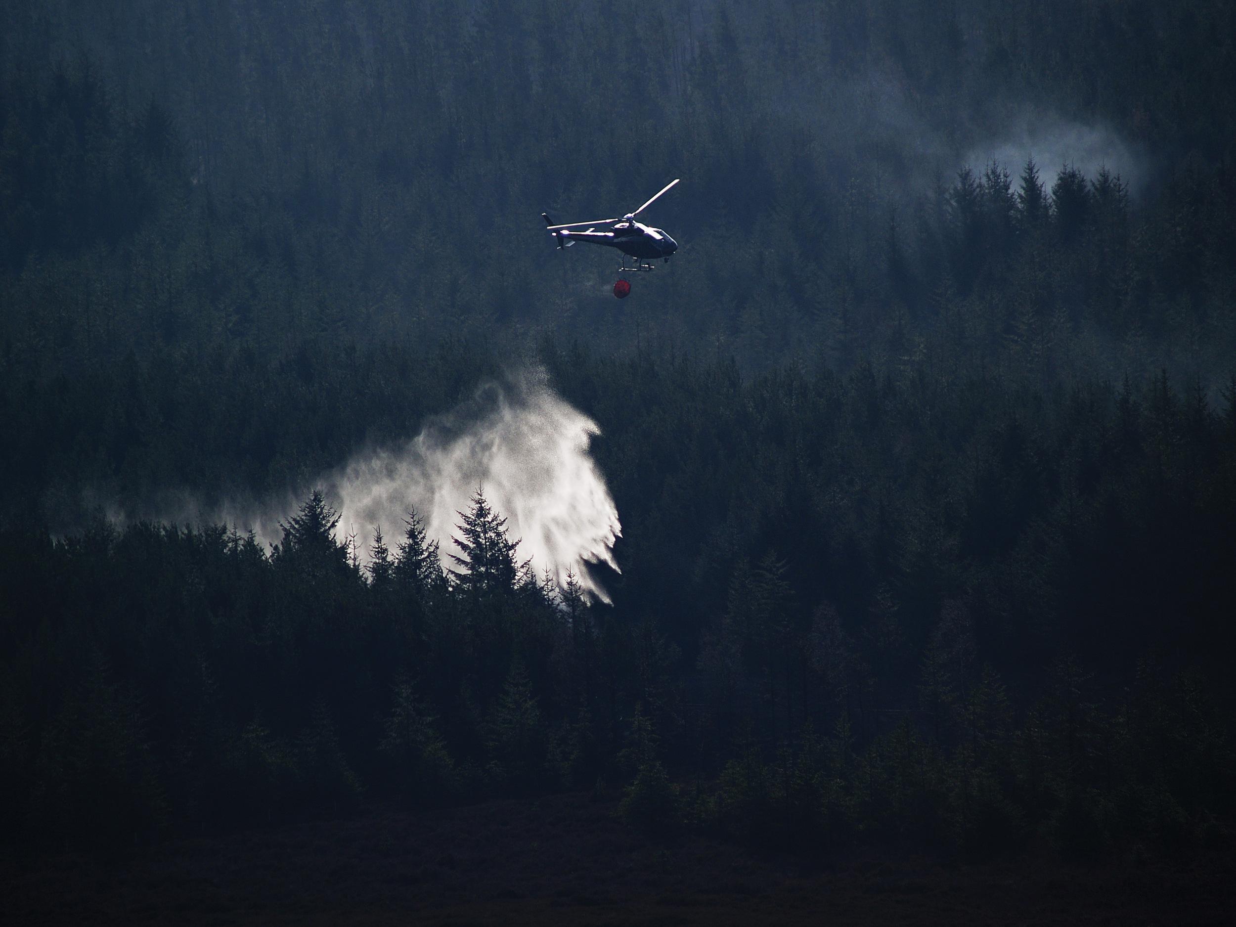 I løpet av de siste 30 årene har blant annet slokkingsutstyret og slokkingsmetodene blitt forbedret, dette har ført til en nedgang i antall skogbranner og brent areal. Foto: John Dalrymple