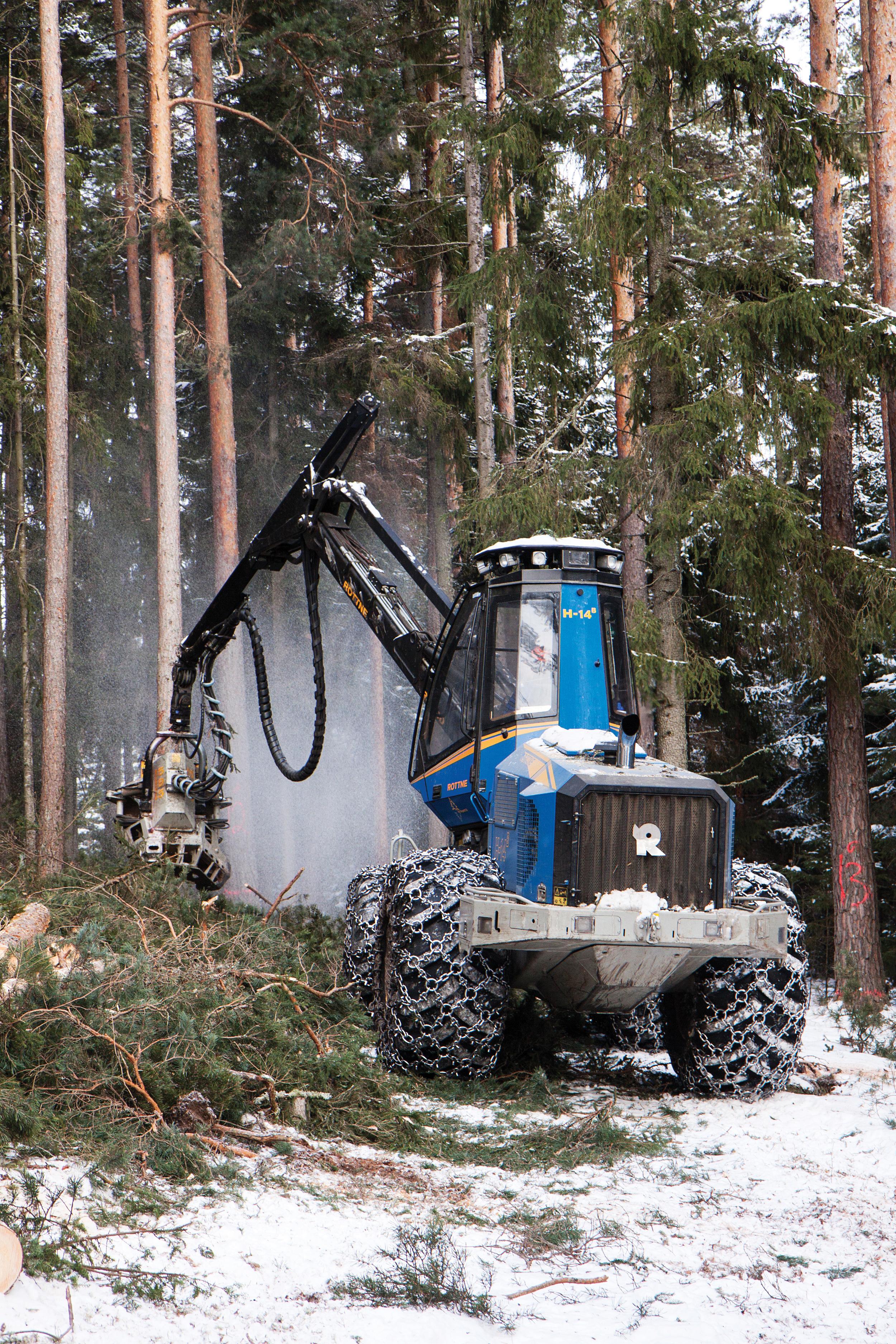 Avvirkningen i norske skoger er langt mindre enn tilveksten. Det meste av avvirkningen foregår nå ved hjelp av hogstmaskiner. Foto: John Yngvar Larsson, NIBIO