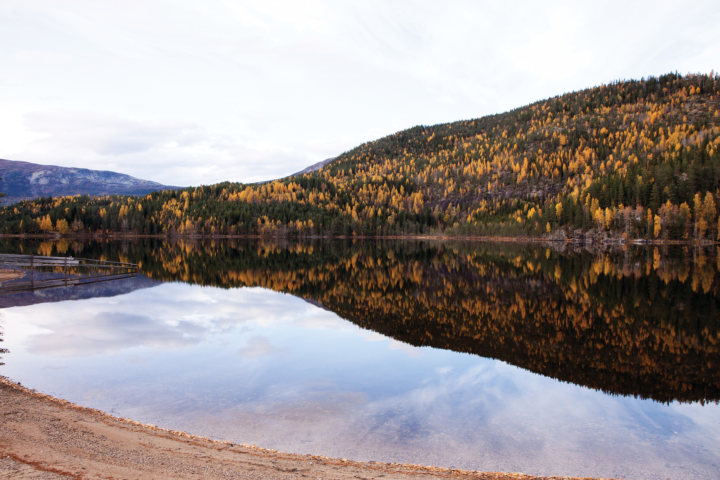 I Norge er det mange små skogeiendommer. For mange av disse er aktivitetsnivået lavt eller sporadisk. Foto: John Yngvar Larsson, NIBIO