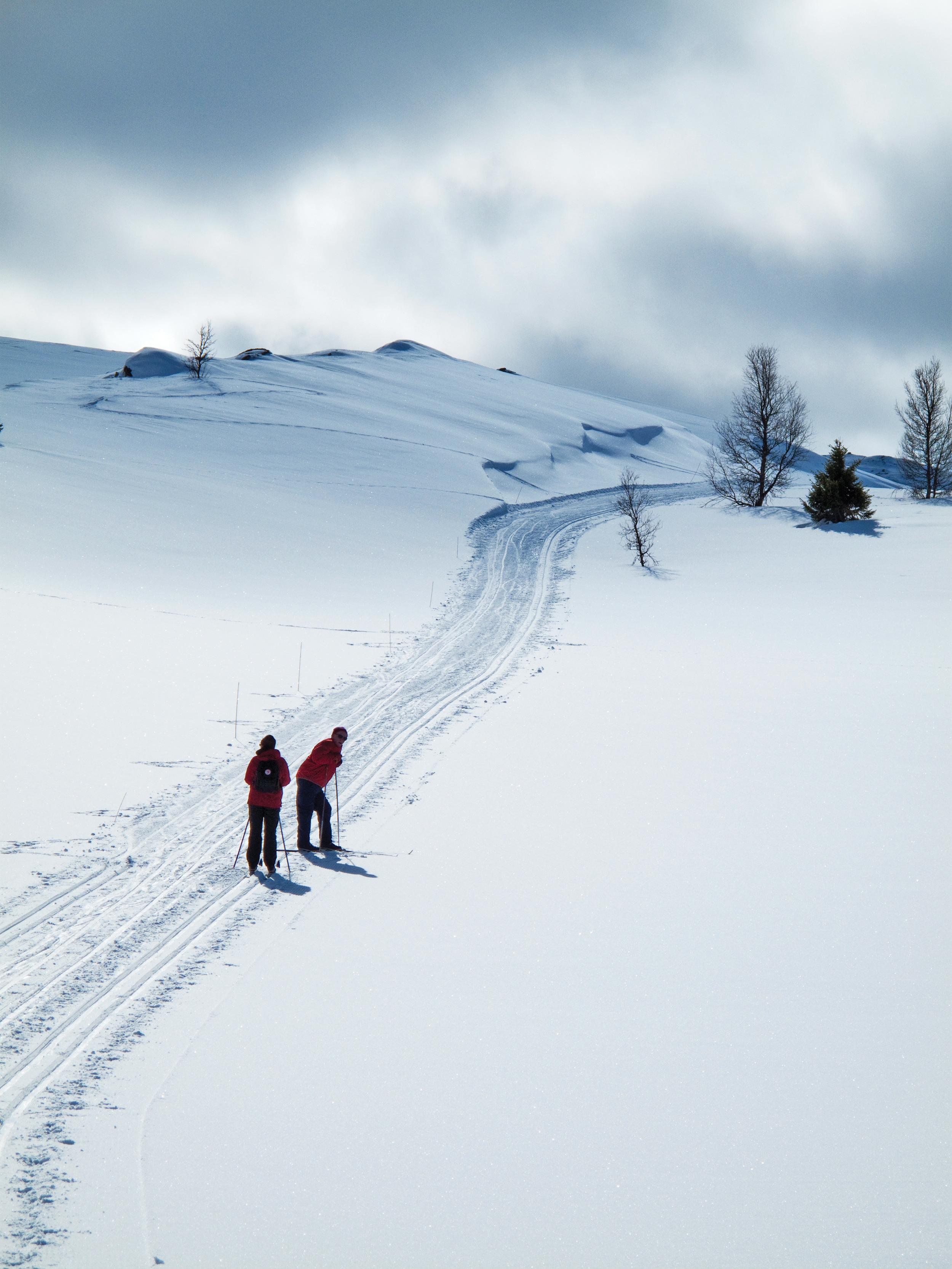 Det var en markert økning i skiturer fra 2007 til 2011, men den senere trenden har vært nedadgående. Foto: Lars Sandved Dalen, NIBIO