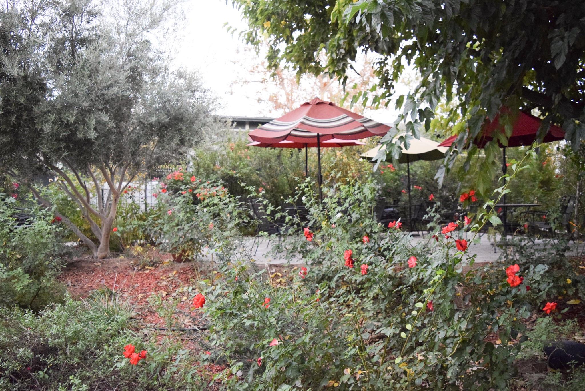 With Love Paper and Wine | Lorenzi Estate Winery