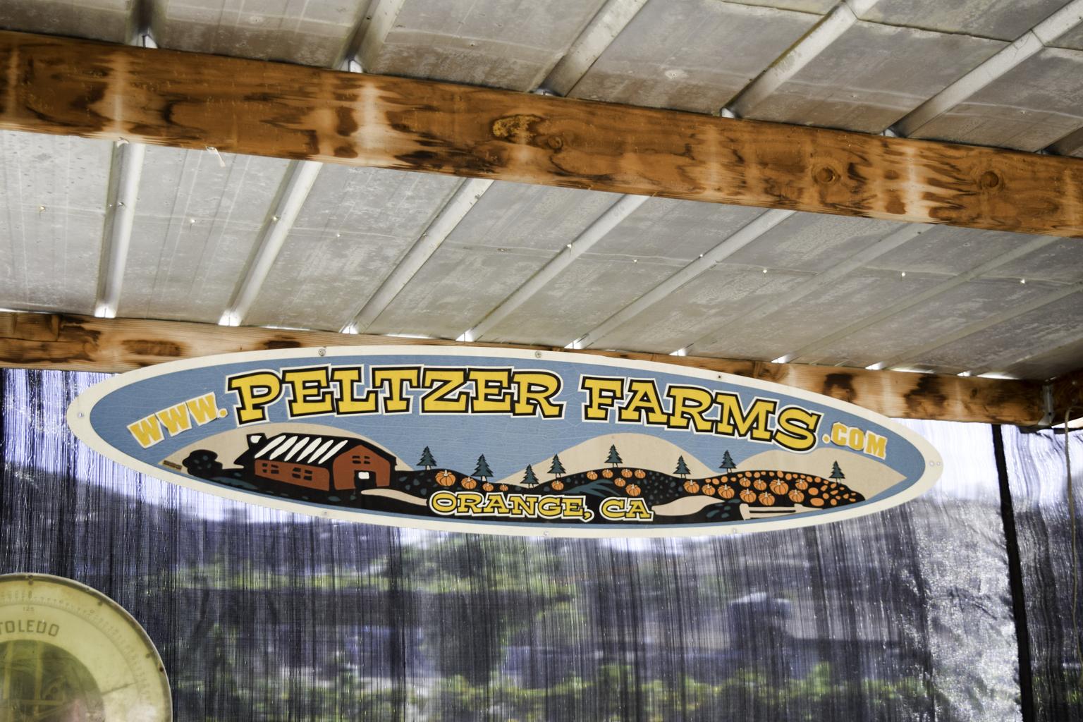 Peltzer Pumpkin Farm and Winery   Erika Beach