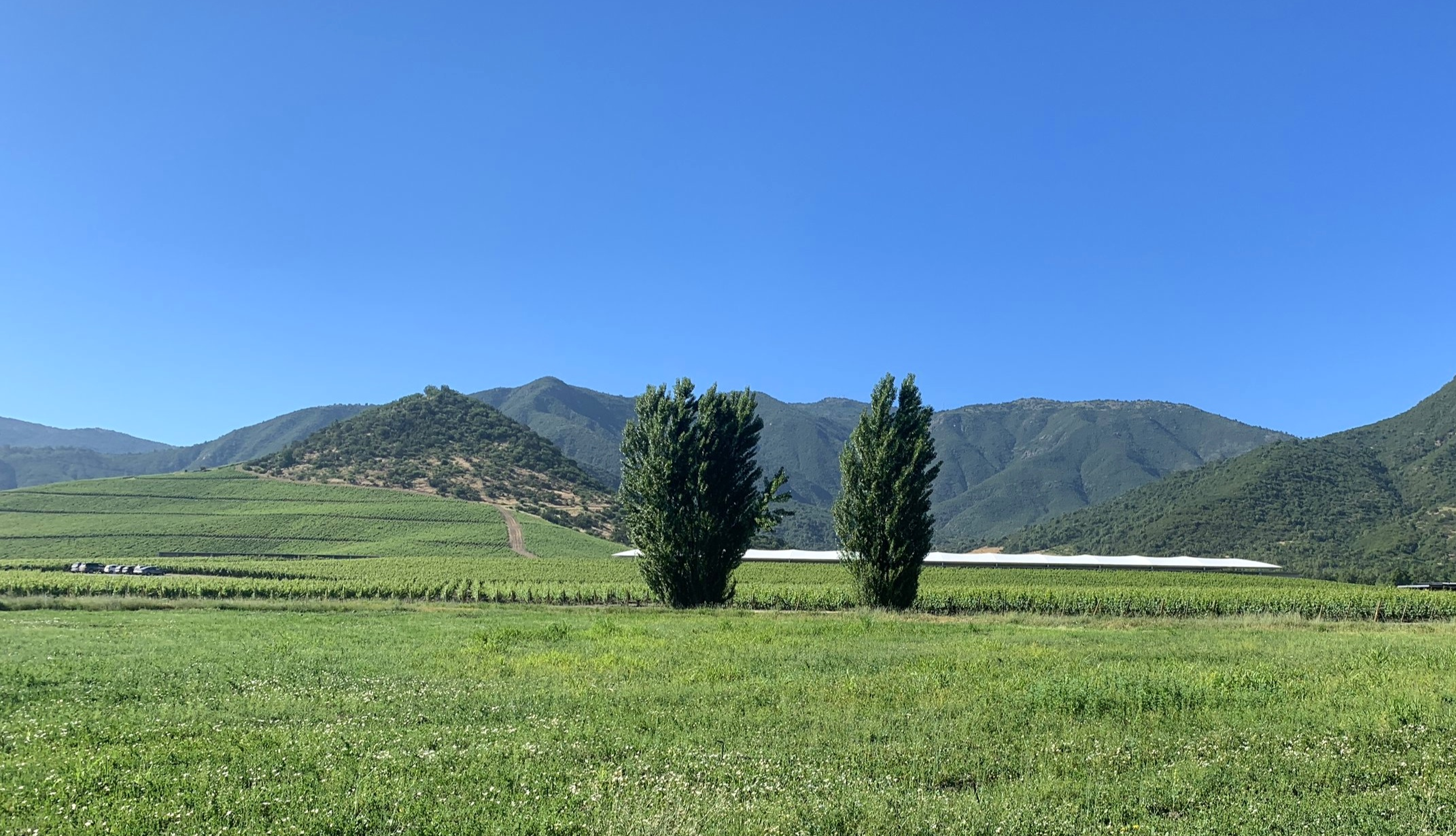 Vina VIK Winery and Retreat | Millahue | Chile