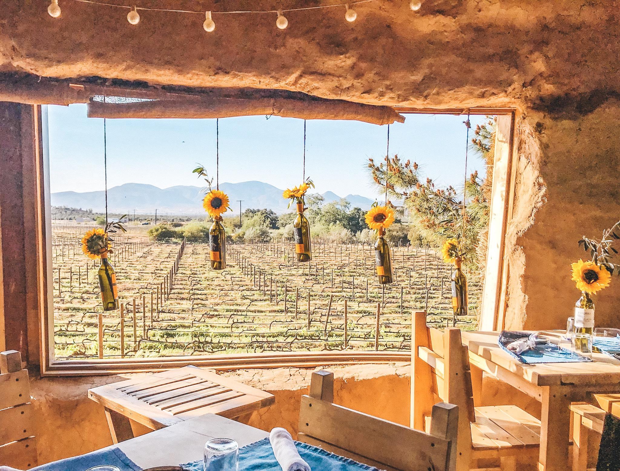 Deckman's El Mogor | Valle de Guadalupe | Photo by Erika Beach