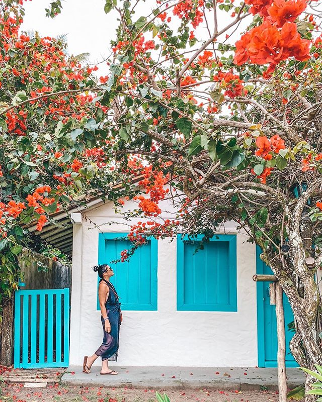 Happy #worldtourismday 🌺 Trancoso, Brazil is probably hands down one of the most beautiful places I've ever been to! I got to spend an amazing 2 weeks and fell in love with the food, culture and most of all the people. Trancoso is known for the Quadrado, the center of town where colored fishermen's houses are restaurants, boutique hotels and shops that surround a large green grass area in a square shape. These houses are painted in bright colors such as turquoise, yellow, pink and blue that are also shaded by ancient trees. Trancoso is far and not really easy to get to, but let me tell you it's so worth it!!!!! #erikalovessouthamerica @visitetrancoso @portoseguroturismo
