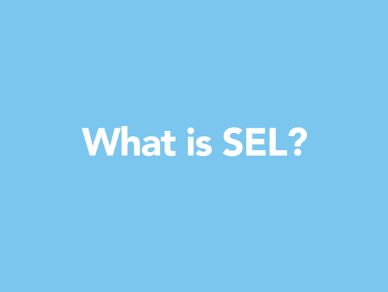 What is SEL_ (6).png