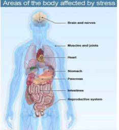Source: Medicine Net