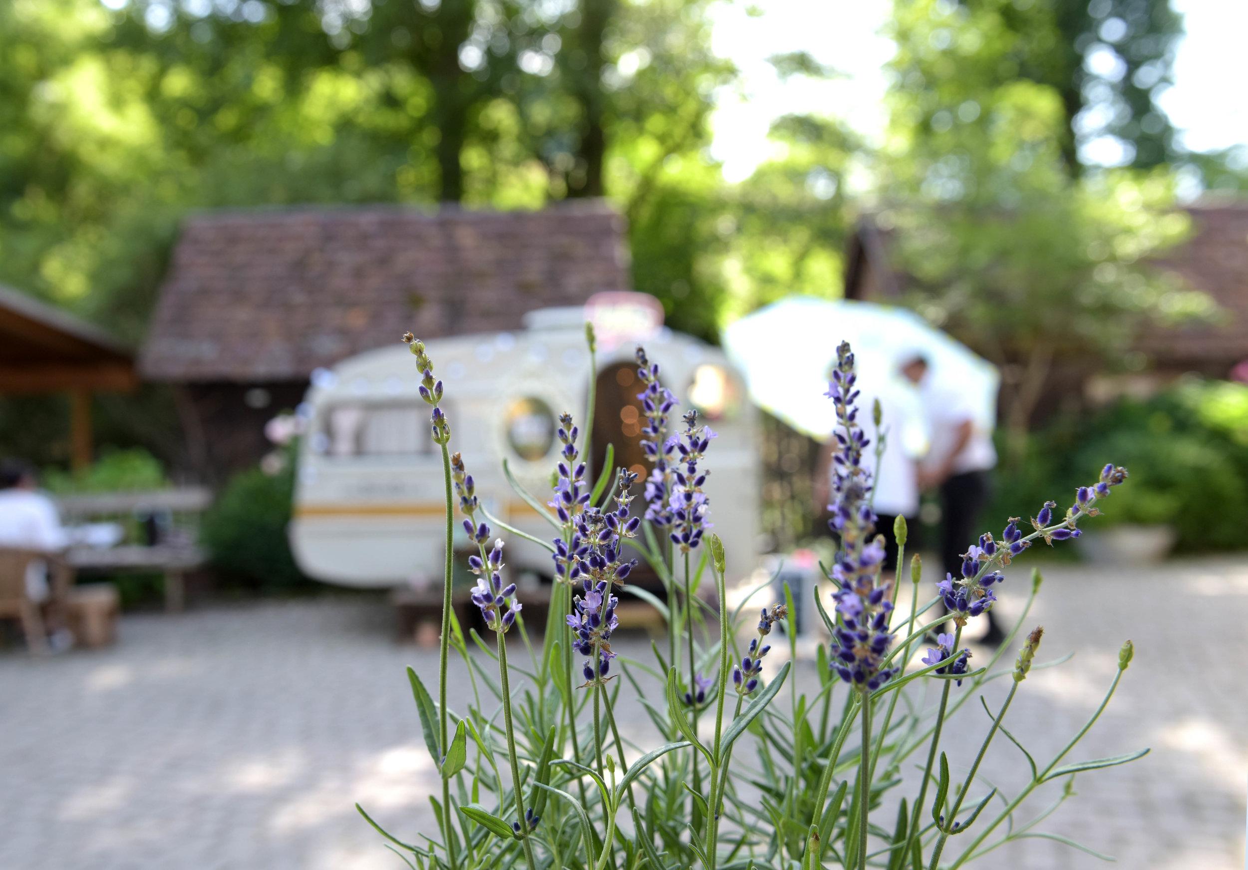 Caravan-Eselsmühle-Bäämely03.jpg
