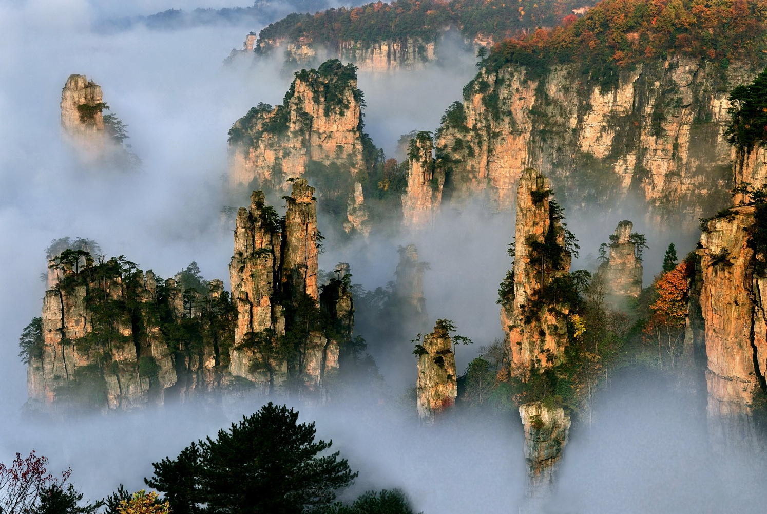 Day 8:Zhangjiajie National Forest Park - Soul, senses and cameras at the ready. Spend the day in Zhangjiajie, the jewel in Hunan's glimmering crown, with its enchanting and captivating sandstone and quartzite forest.