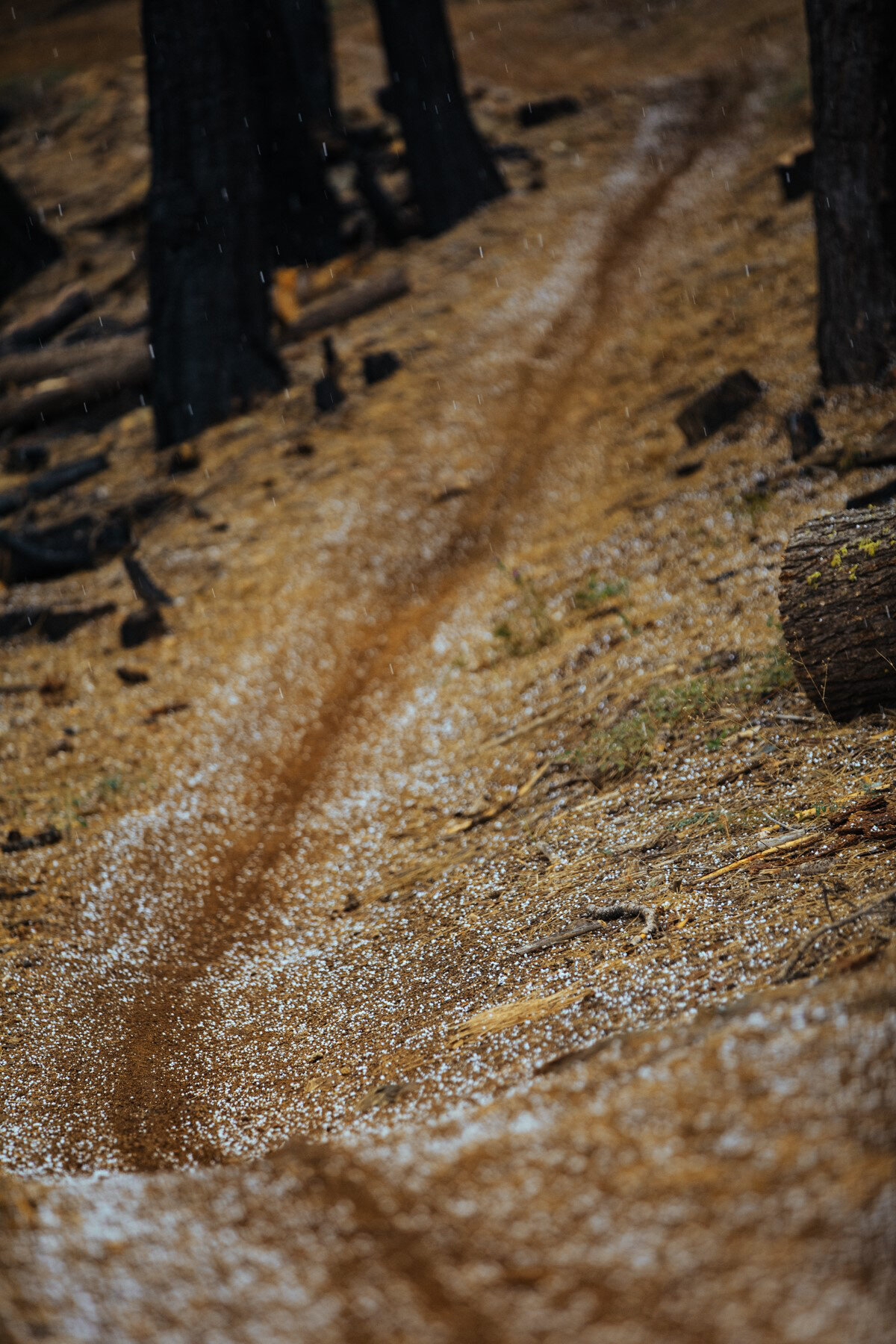 California Singletrack Gravel Race