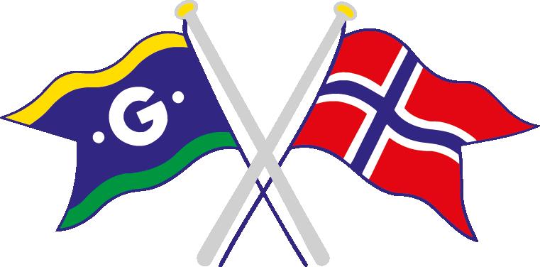 logo flagg grå.png