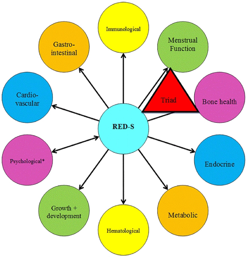Figure 1.  Credit for Image given to Reference 2 (above). Health Consequences of Relative Energy Deficiency in Sport (RED-S) showing an expanded concept of the Female Athlete Triad to acknowledge a wider range of outcomes and the application to male athletes