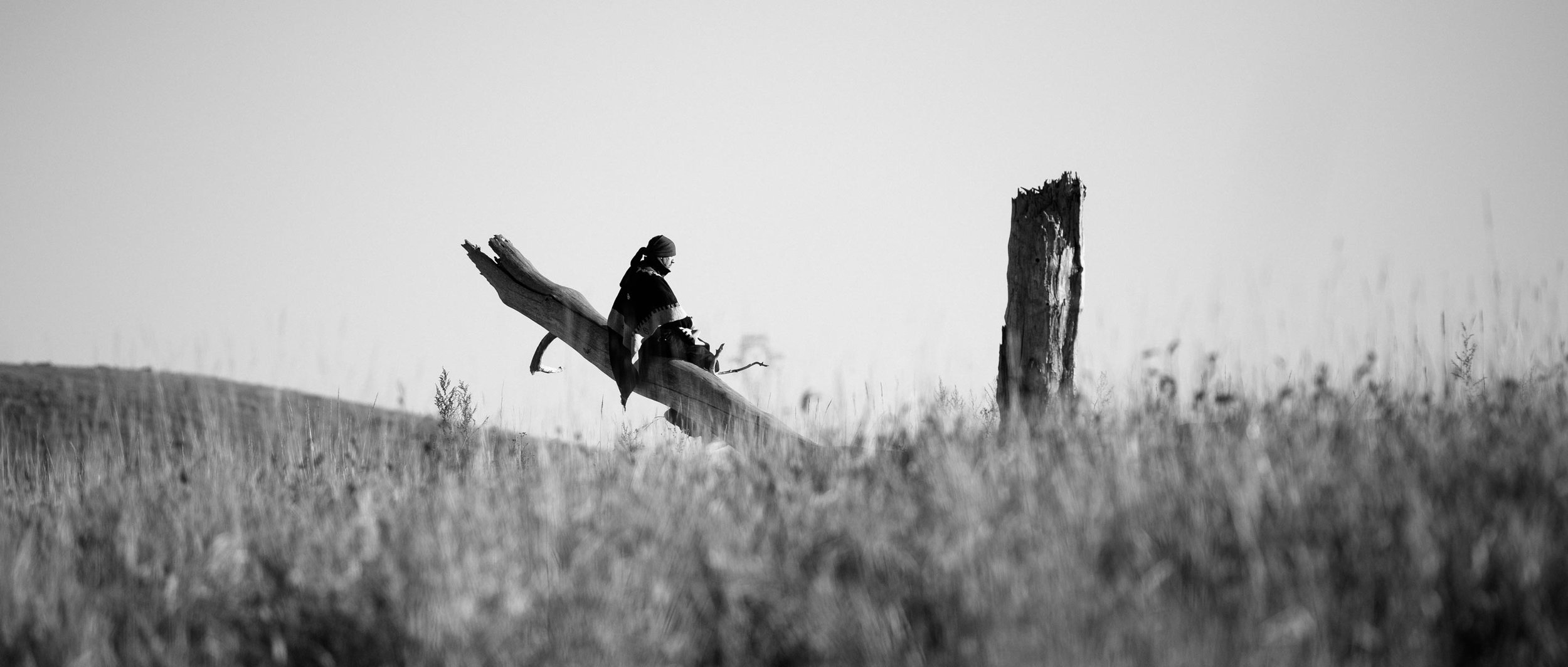 Standing_Rock_Nicholas_Small-1.jpg