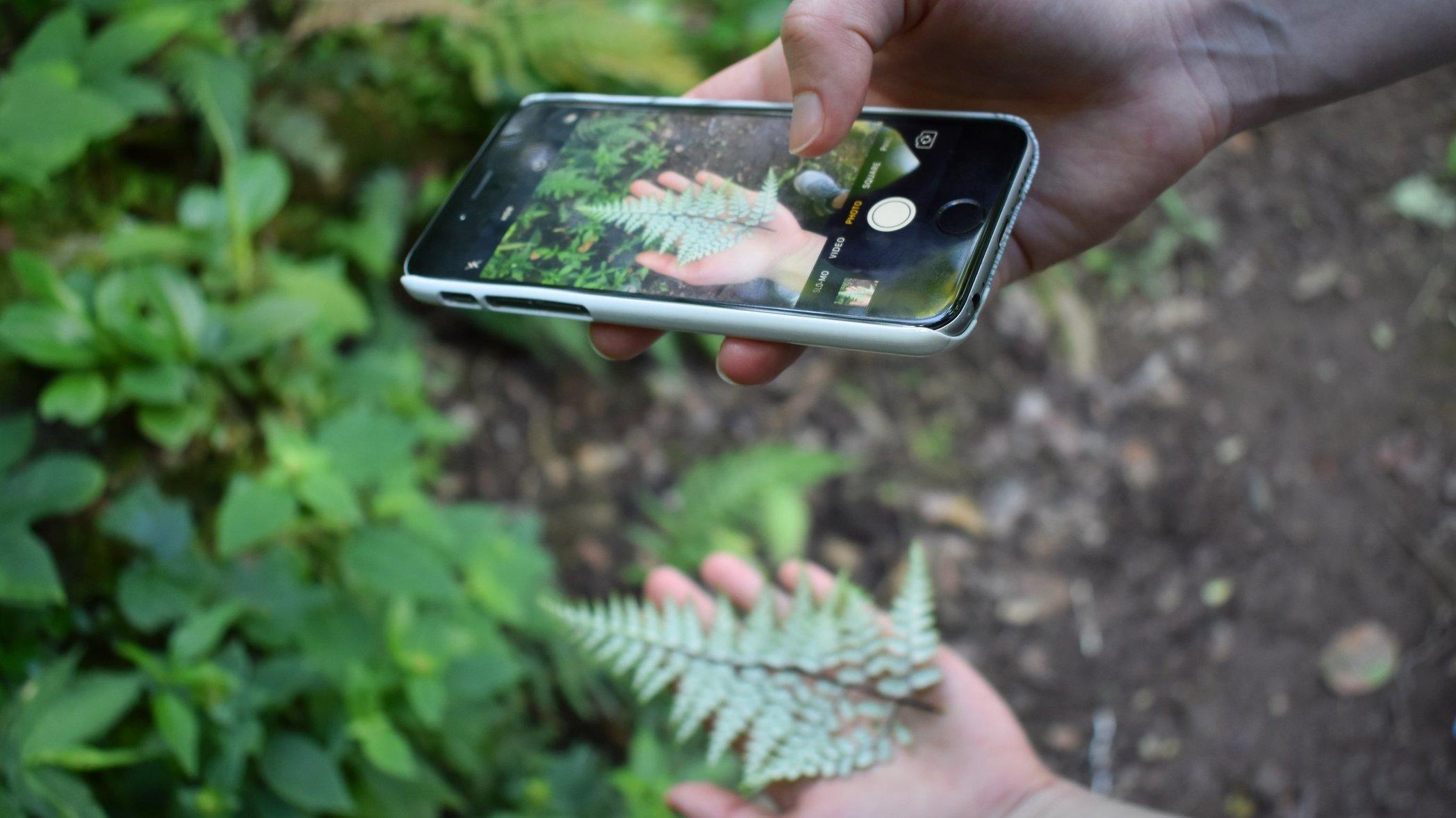 britton-perelman-smartphone-camera-tips-header.jpg