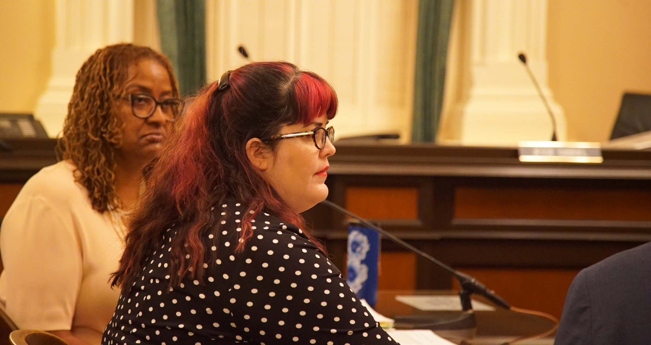 """- """"For far too long city has kowtowed to the developers, what they want, not often enough listened to the tenants. We are 49% of the city; I wish they'd listen to us.""""- Stasha Powell"""