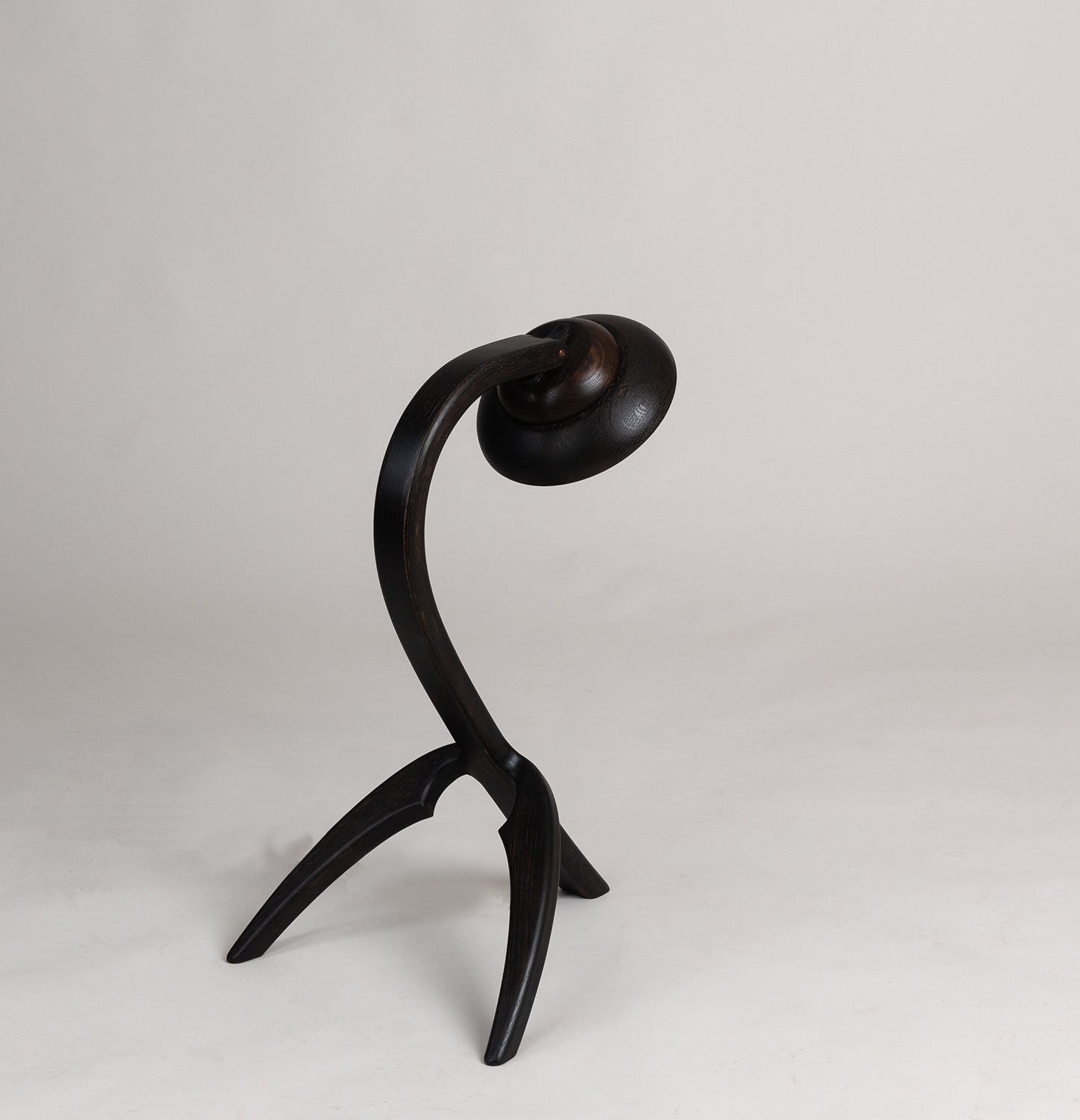 Eala Lamp by Alan Flannery Furniture Design L9.jpg