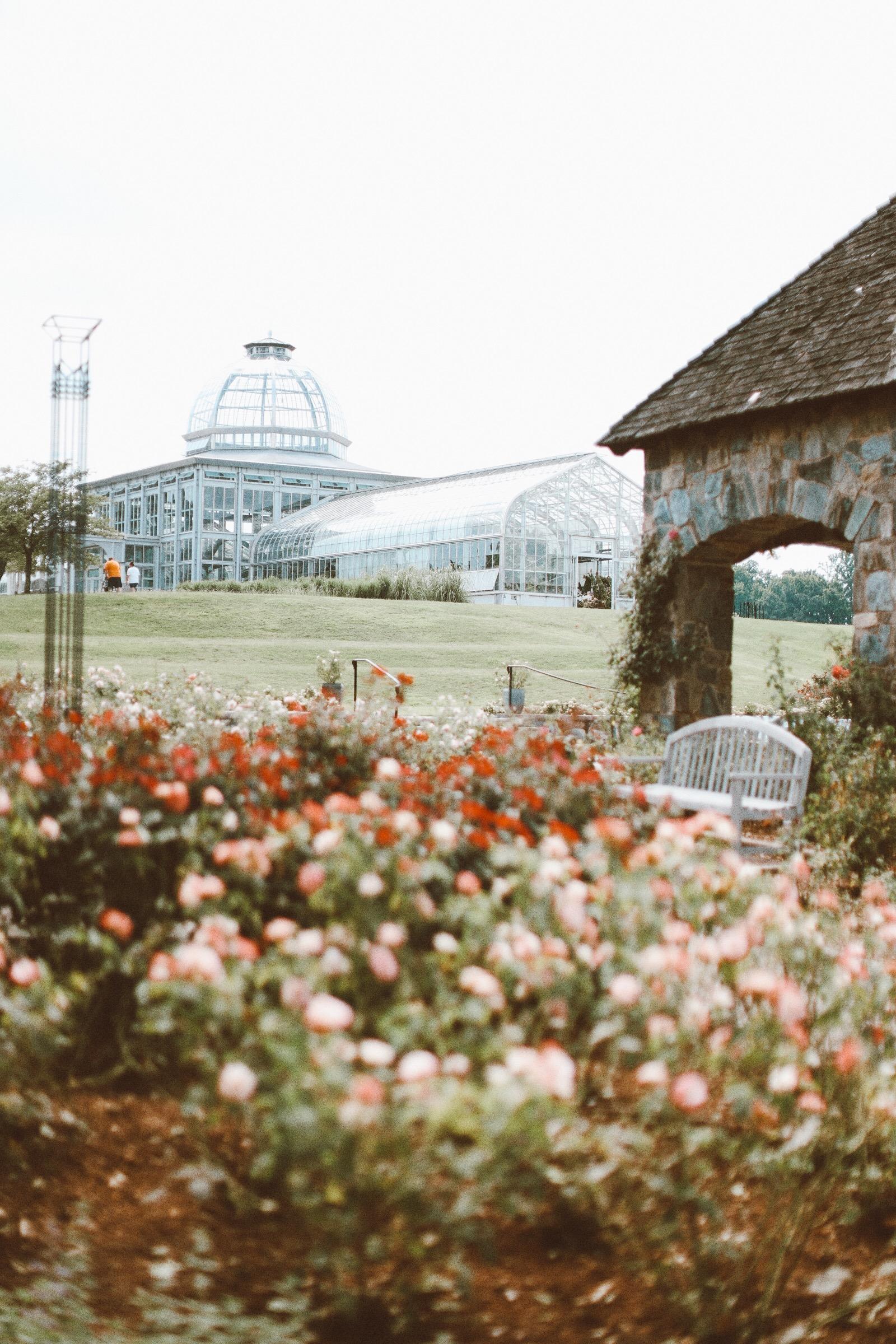 images above & below: Lewis Ginter Botanical gardens