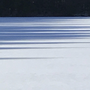 shadows on lake web.jpg