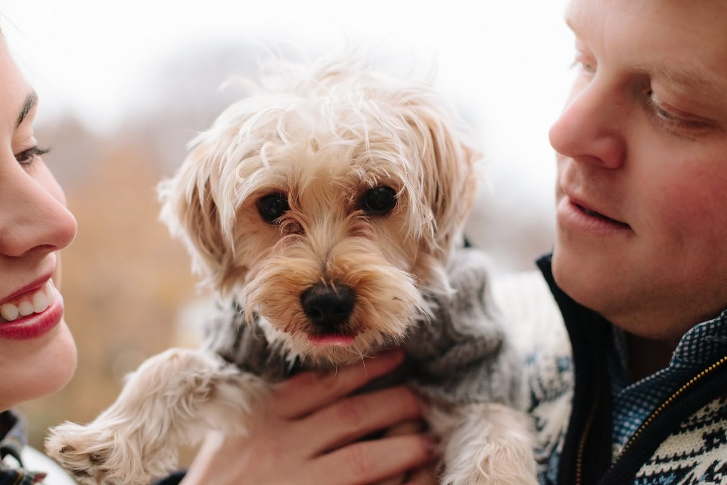 024-nyc-wedding-photographer-puppy-holiday-mini-session-fall-central-park.jpg