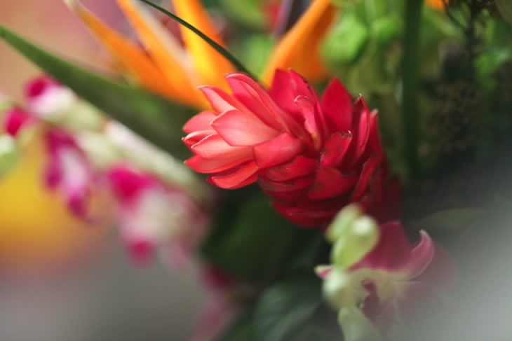 nyc-wedding-photographer-flowers-005.jpg