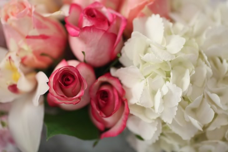 nyc-wedding-photographer-flowers-009.jpg