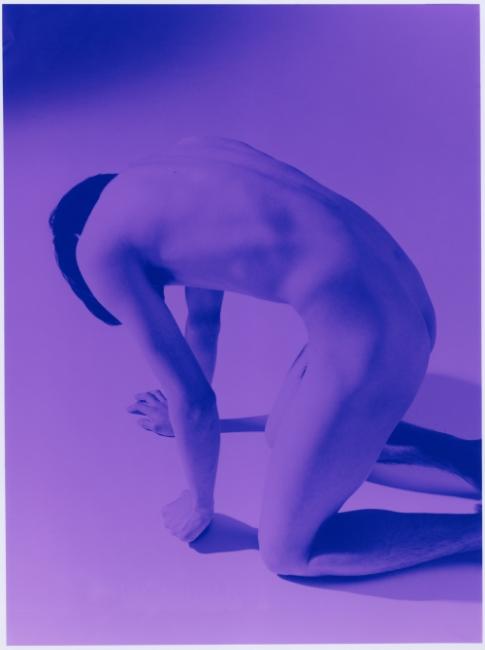 Image above: ©Mayumi Hosokura, Wing Back, 2014, Type C-Print / Courtesy of Miyako Yoshinaga, New York, and G/P Gallery, Tokyo