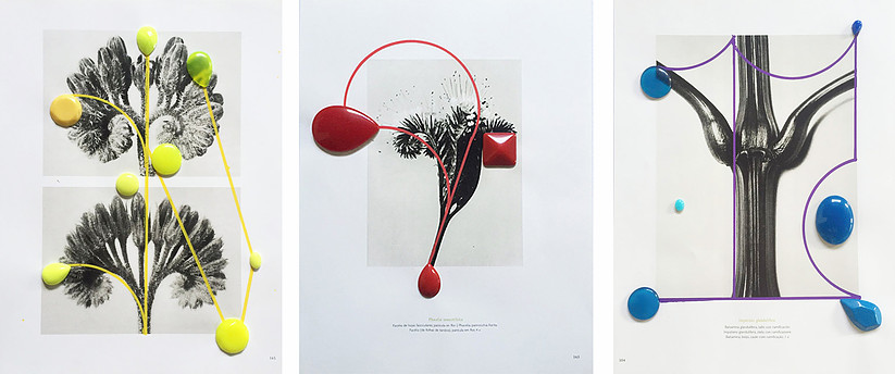 """Image above: ©Nino Cais, Untitled, From the series """"Flowers and Stones,""""2016, Jjewelry and acrylic pen on printed paper / Courtesy of Fridman Gallery"""