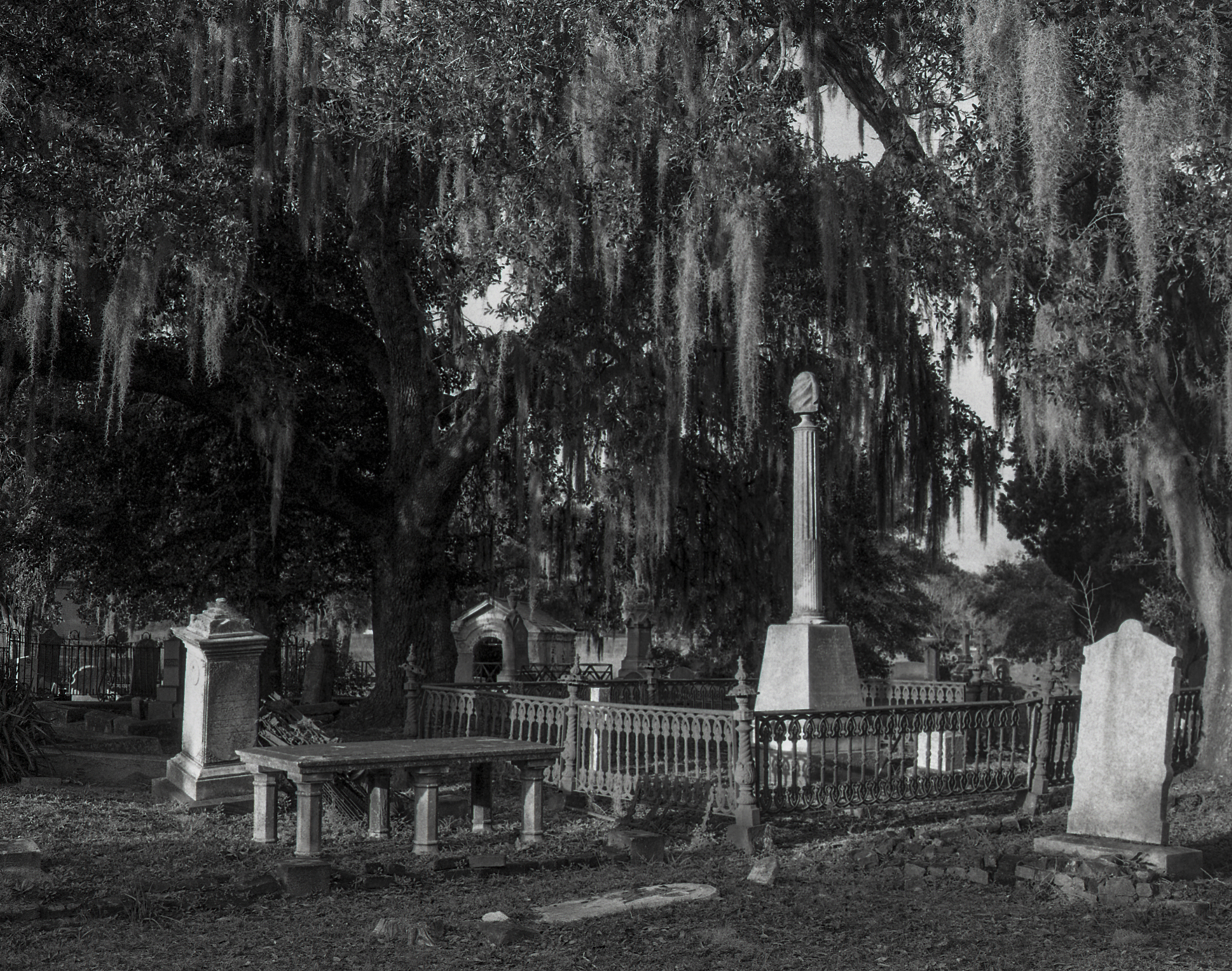 cemetery_bw_scans018.jpg