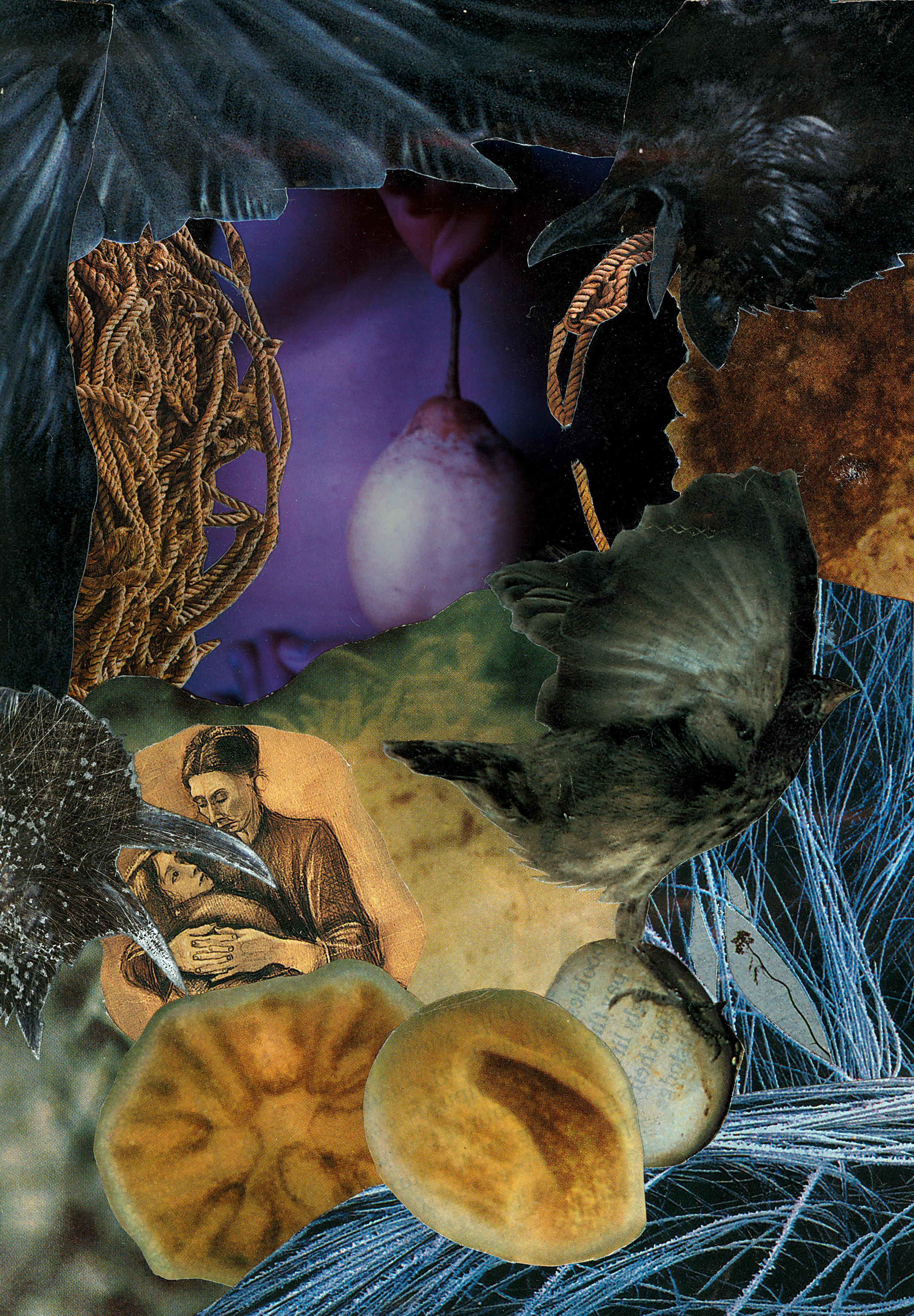 Agnieszka Sosnowska,Birth I, Polaroid Collage, 2003