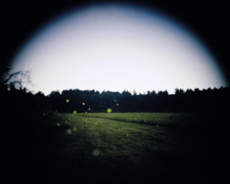 From  The Meadow . Photograph © 2015 Barbara Bosworth. www.radiusbooks.org