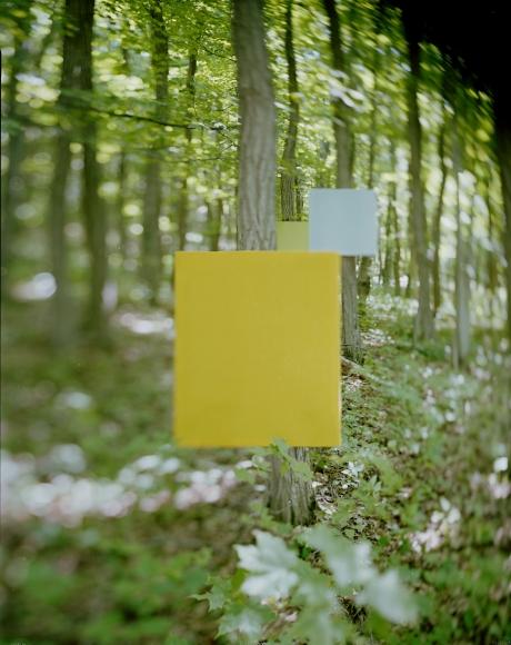 Victor Schrager,Woodwork #3, 2014