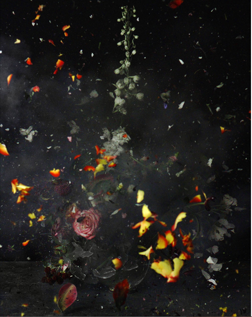 ©Ori Gersht,  Time After Time : Untitled No. 12 [2007] LVT Print mounted on aluminum 40 x 31 cm edition of 6