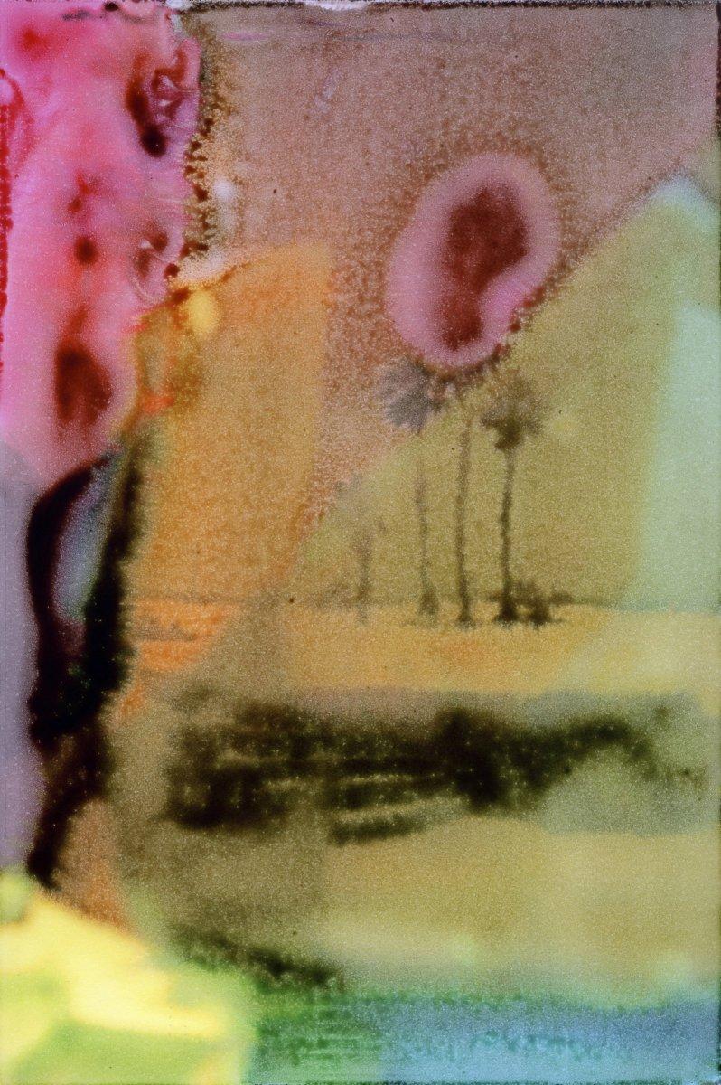 Untitled , 2017.©Fred Cray, courtesy Janet Borden, Inc., NY