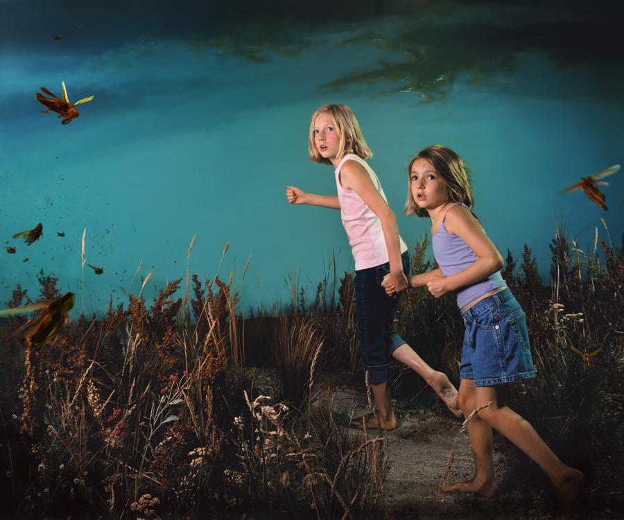 'Plague of Locusts'  © Sara Belleau