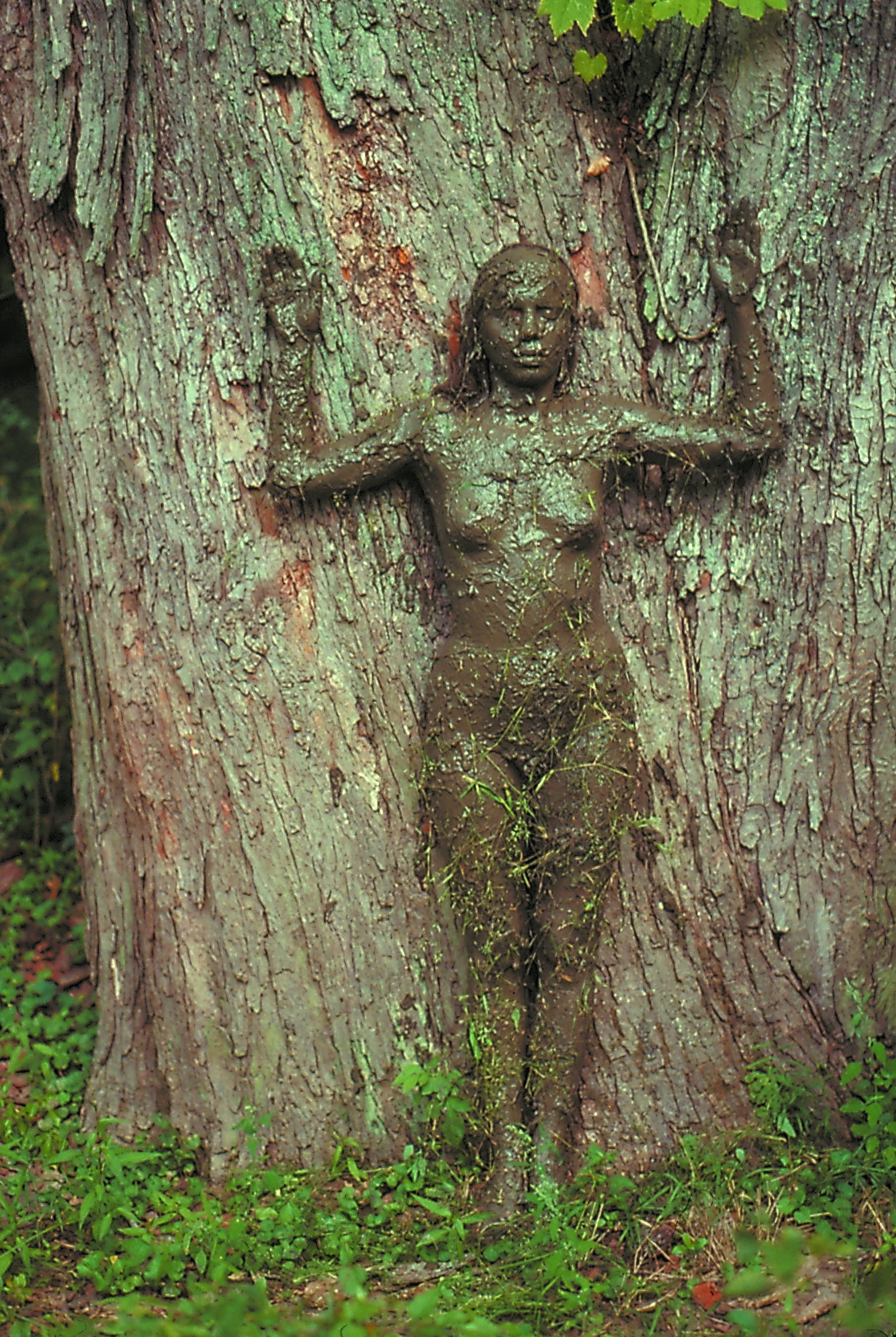 Tree of Life , 1976 Photograph © The Estate of Ana Mendieta Collection, LLC,Courtesy Galerie Lelong, New York