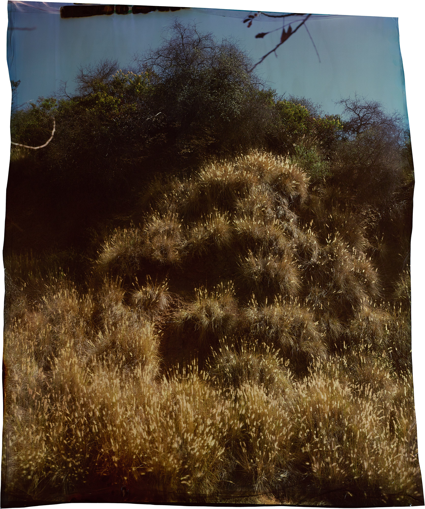 John Chiara,  Western Canyon Road at Mount Hollywood Drive, Los Angeles,   2013 ; from  John Chiara: California