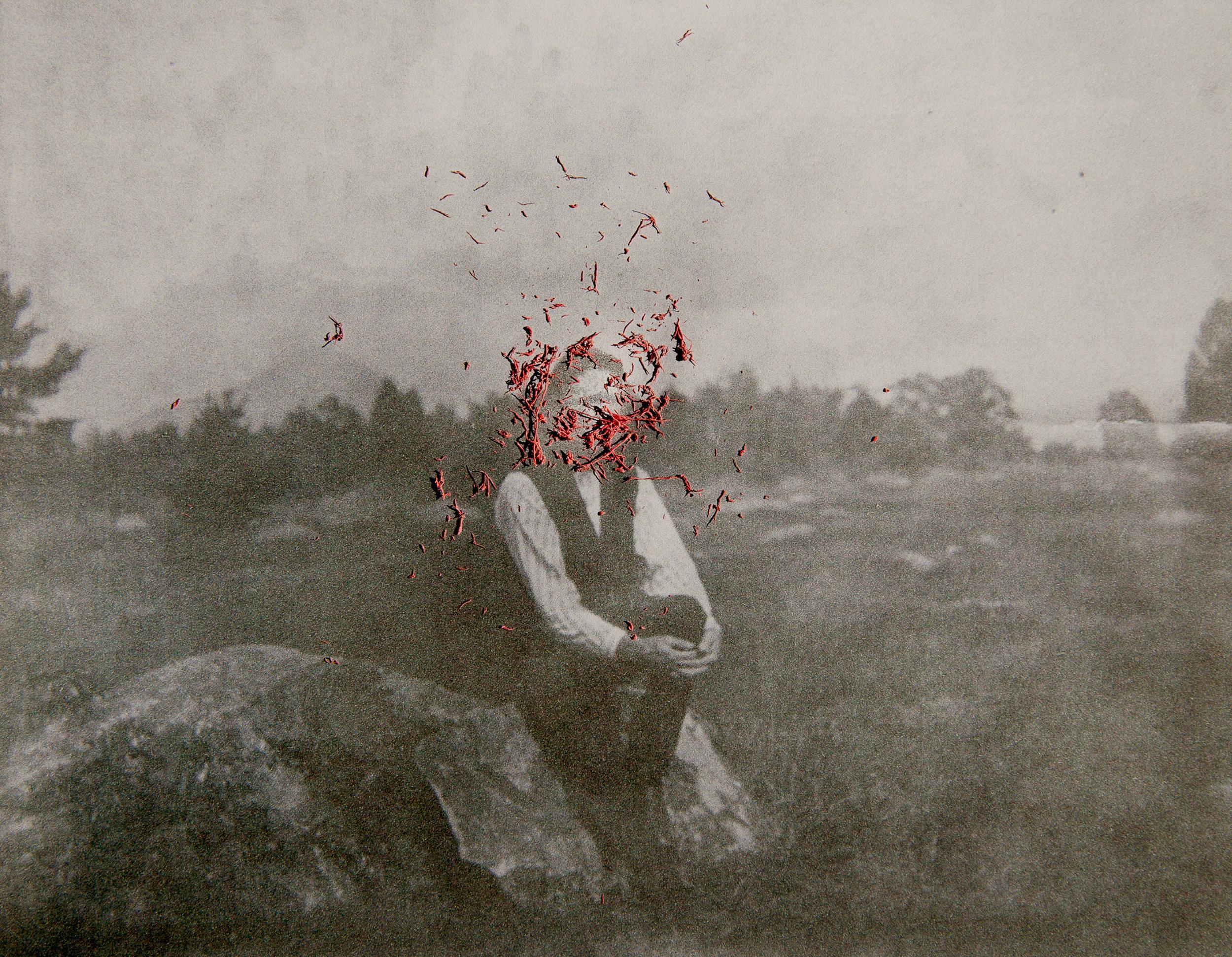 Hermit Erased © Amani Willet