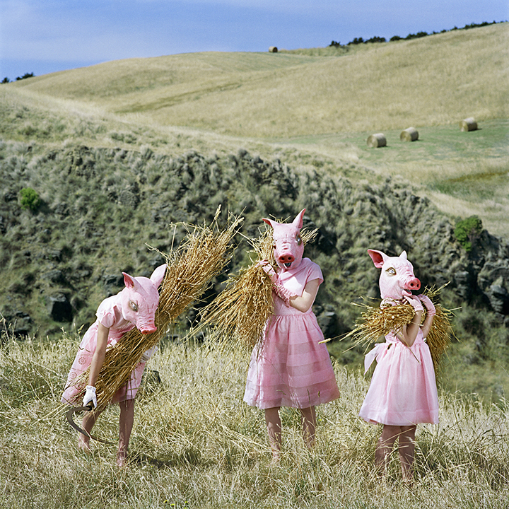The Harvesters ©Polixeni Papapetrou