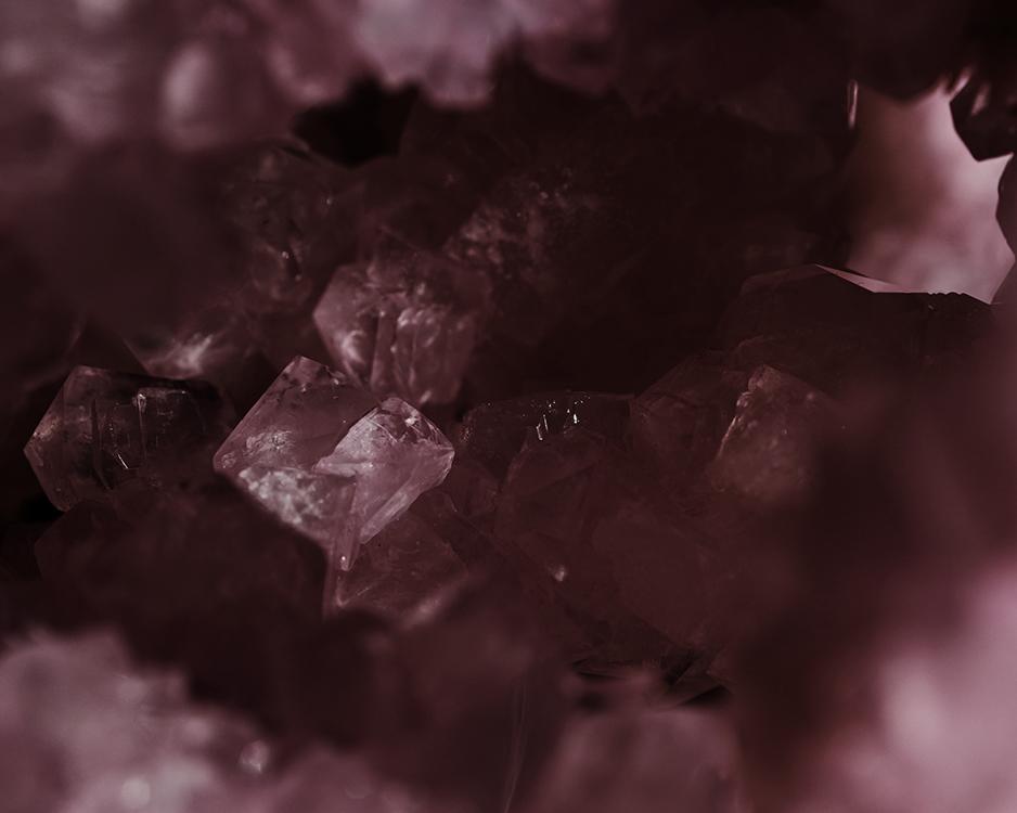Abnegate ©Leticia Flores