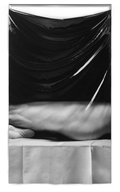 Leg and Sole,2018. Pigment print on silk, silicone rubber, anodised  aluminium.92 x 180 x 3 cm