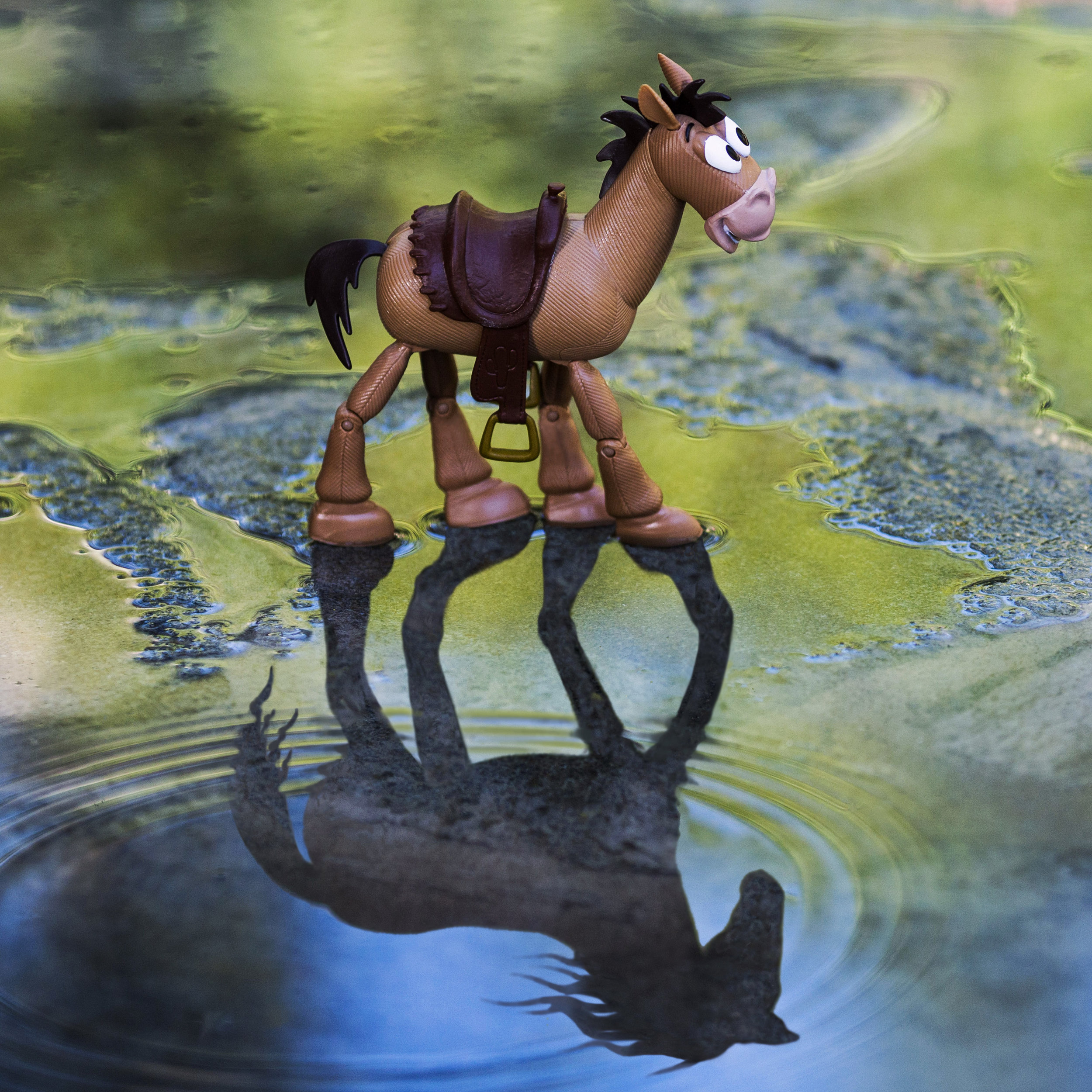 Toy Story Bullseye Reflection.jpg