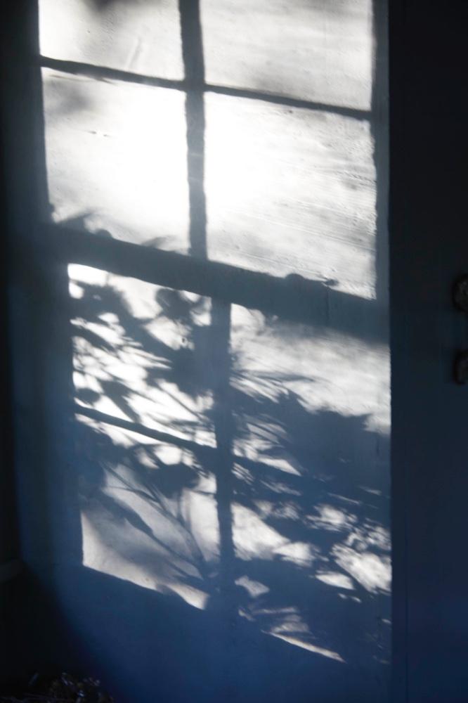 Shadows on the bedroom wall...2017