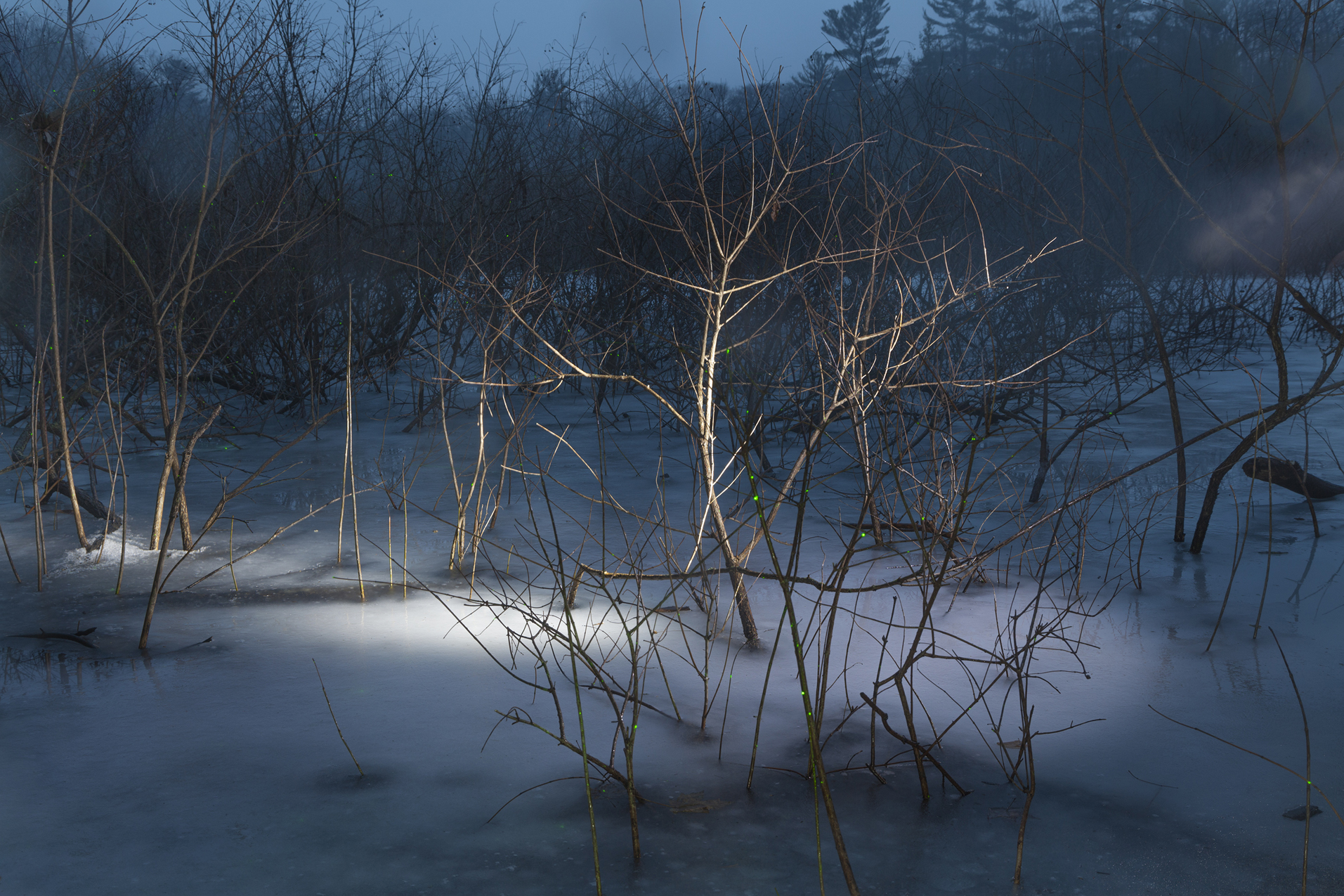 Frozen Pond, 2017 © Barbara Diener, from  Phantom Power , published by Daylight Books, 2018.