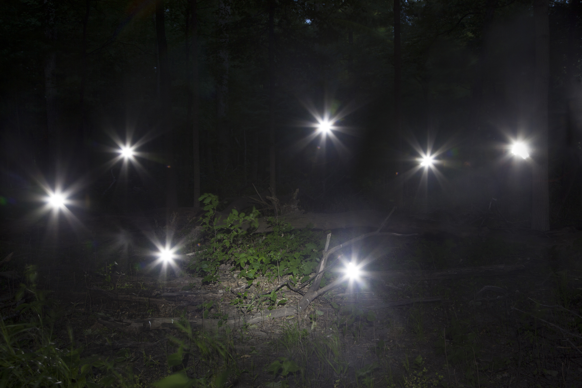 Orbs in Darkness, 2017 © Barbara Diener, from  Phantom Power , published by Daylight Books, 2018.