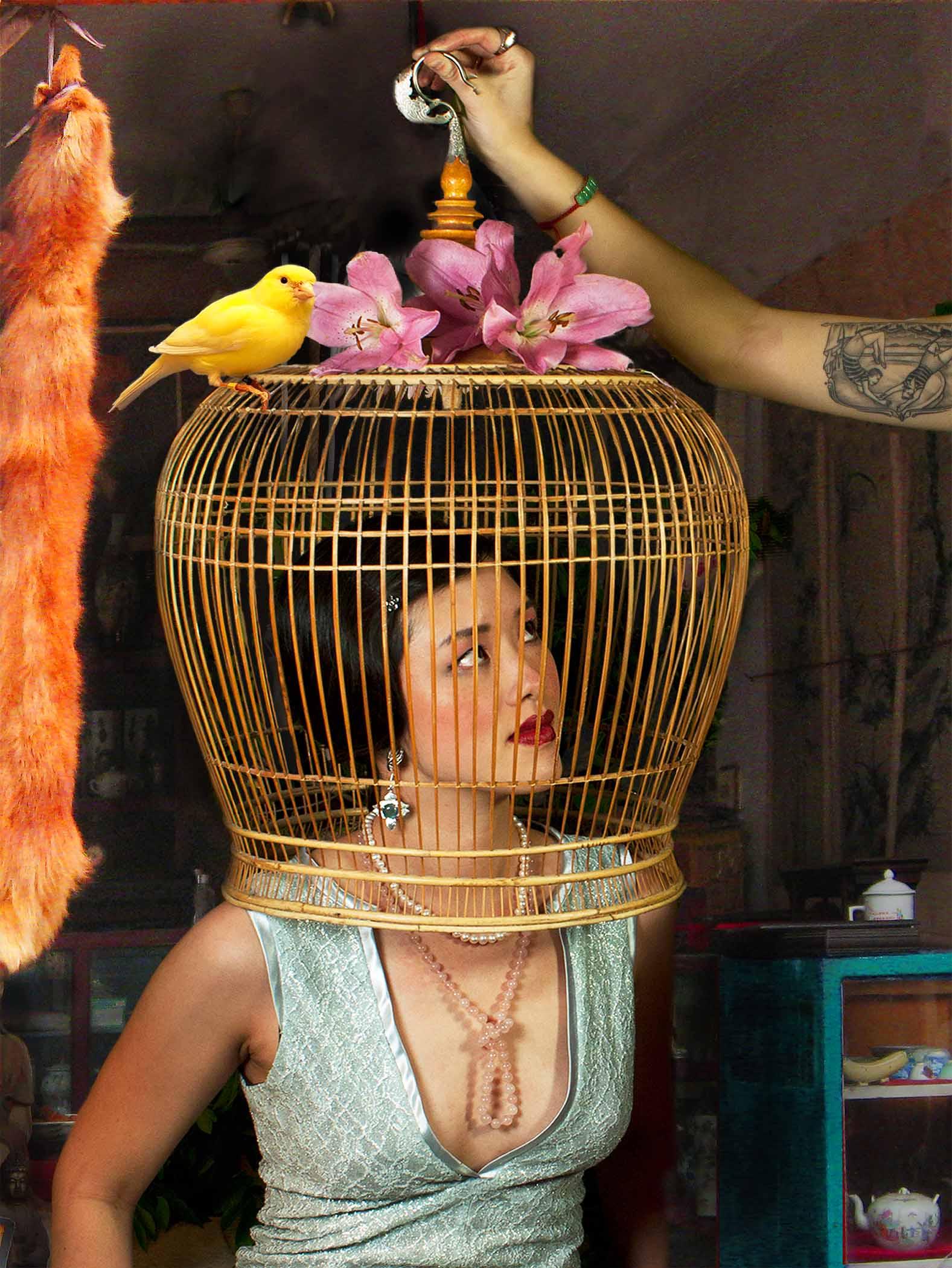 """The Bird Cage"".UV Photograph on Plexiglass substrate.30"" x 40"" . 2012. © Mei Xian Qiu"