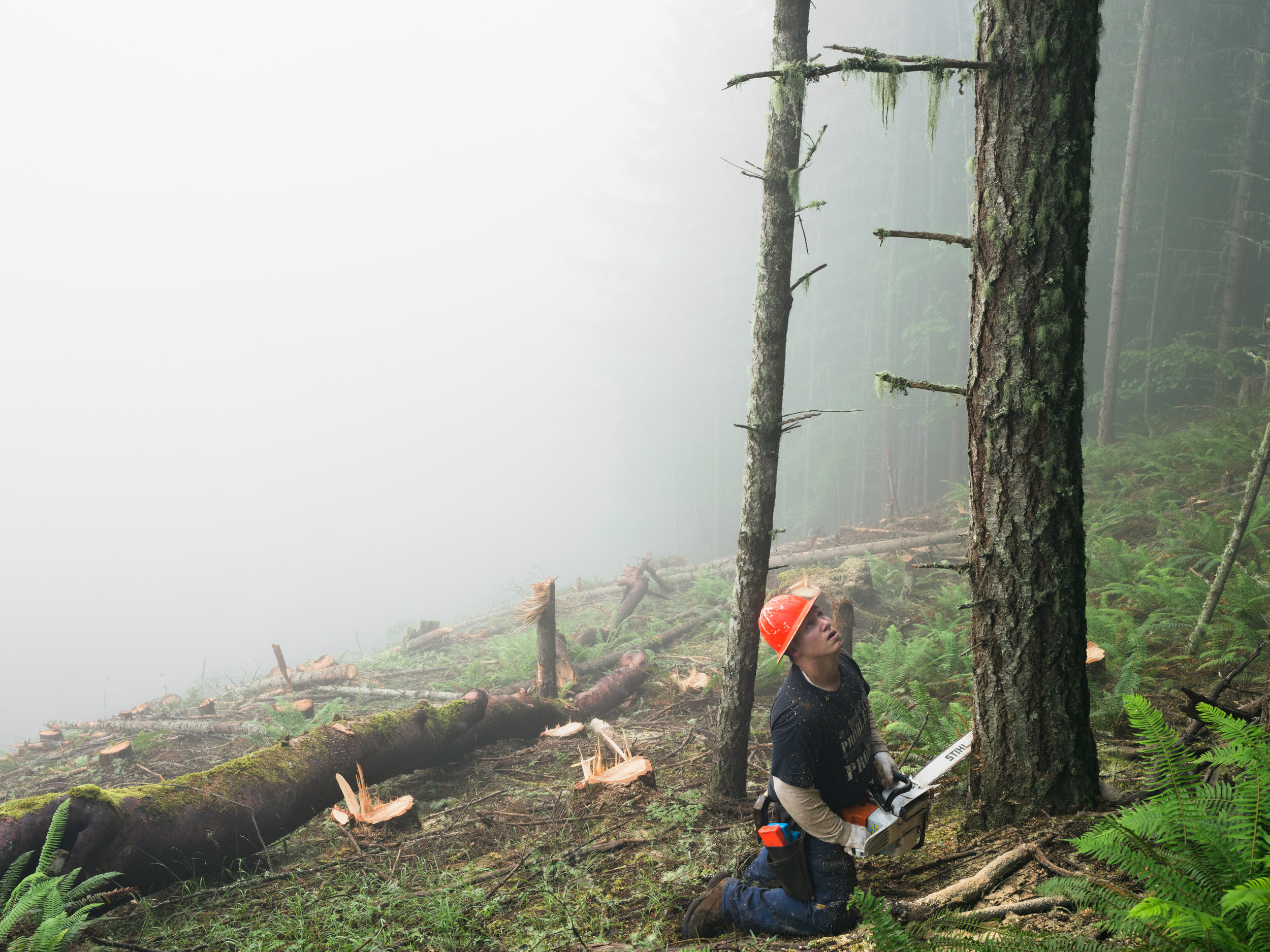 © Lucas Foglia (Nate Clearcutting a Forest Planted 60 Years Earlier, Oregon 2014)