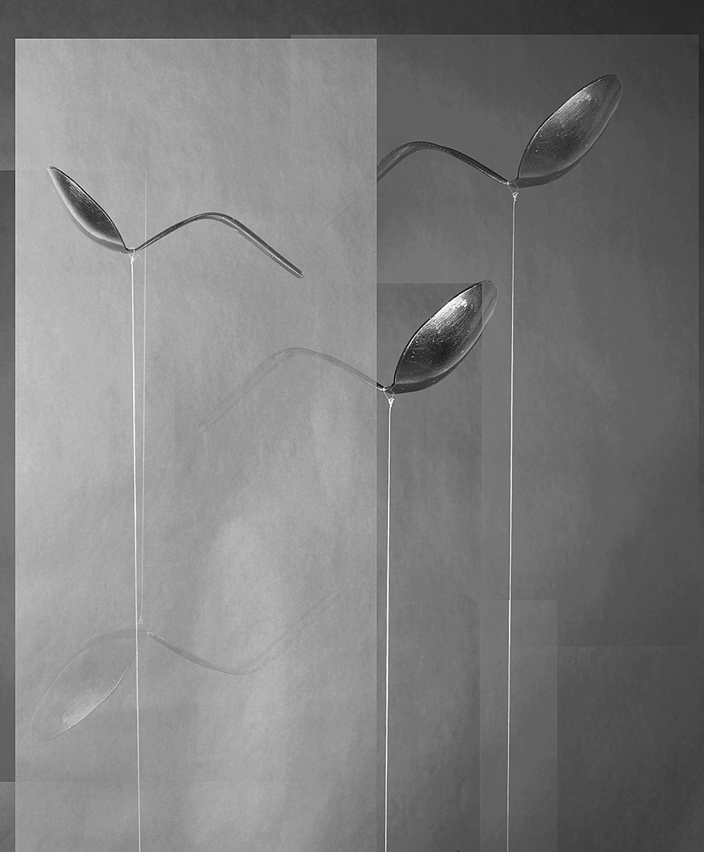 Spoons, from the series 'Other Ways of Knowing', 2016 © Alexandra Lethbridge