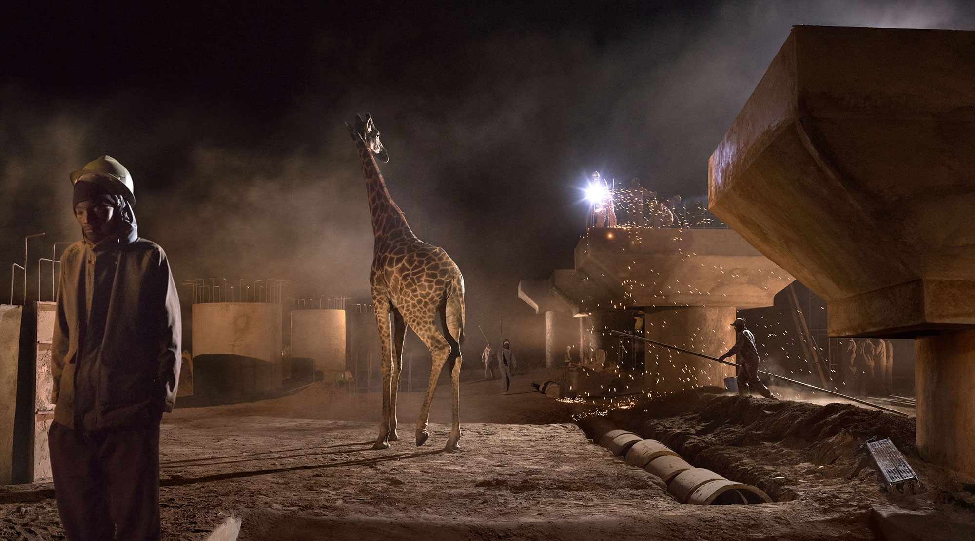 Bridge Construction With Giraffe & Worker. Copyright Nick Brandt.